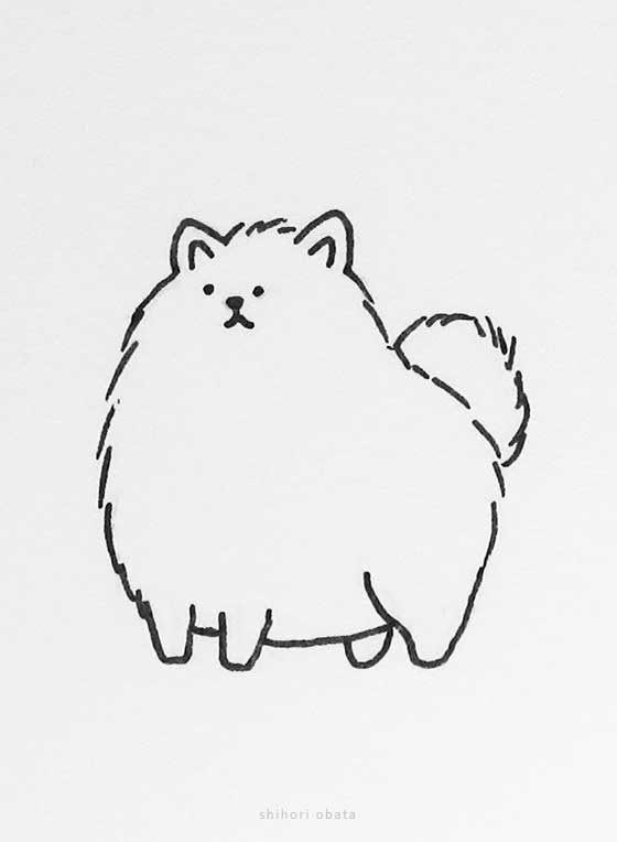 easy dog drawing pomeranian