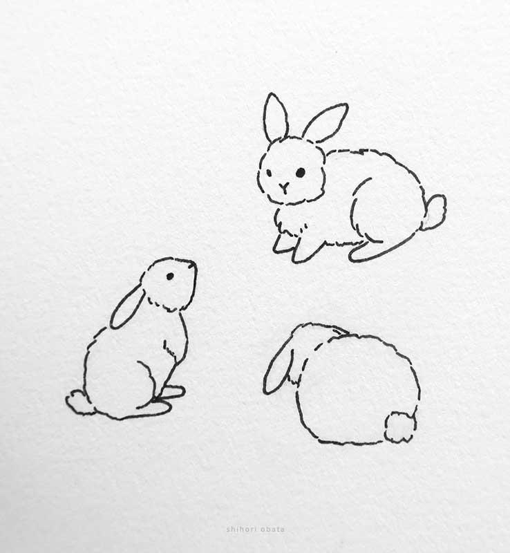 bunny rabbit drawings