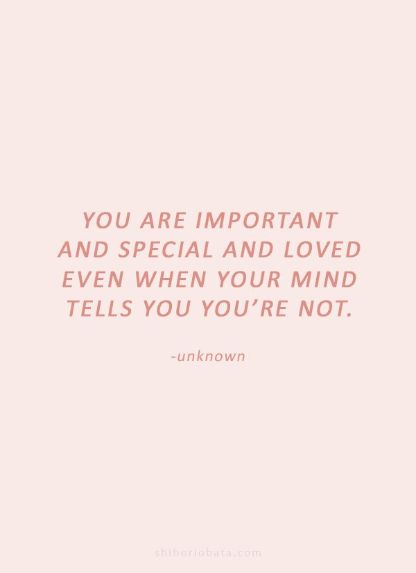 you are important and special and loved quote